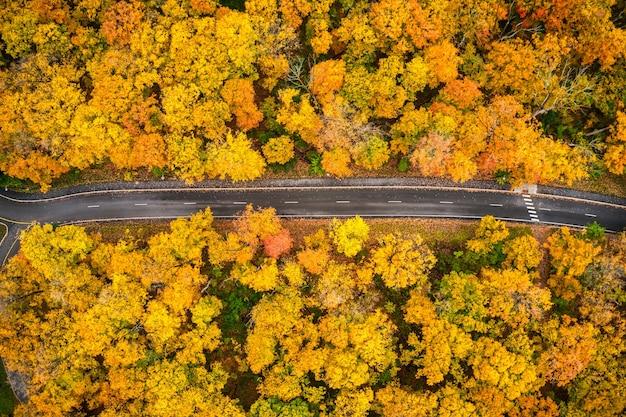 Zdjęcie lotnicze długiego szlaku prowadzącego przez żółte jesienne drzewa