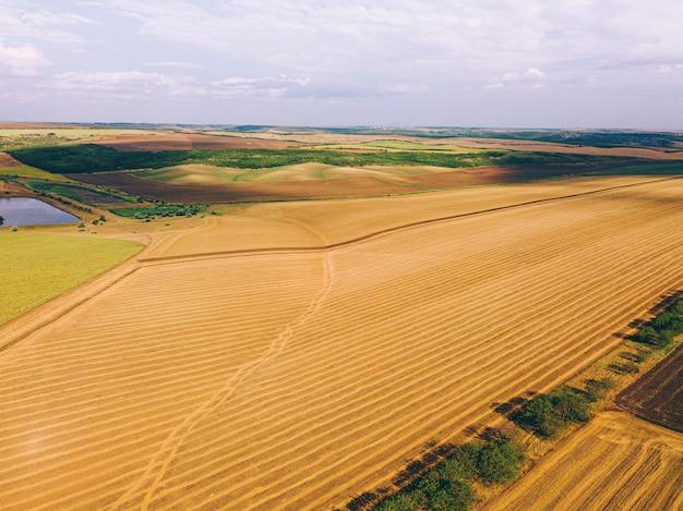 Zdjęcie lotnicze drona niesamowitego krajobrazu z uprawami i jeziorem, koncepcja rolnictwa.