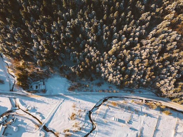 Zdjęcie lotnicze, niesamowity widok z góry lasu iglastego zimą o wschodzie słońca