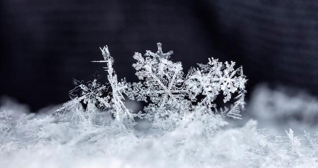 Zdjęcie małego płatka śniegu wykonanego podczas opadów śniegu