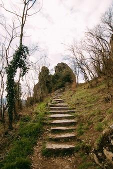 Zdjęcie niektórych schodów prowadzących do dużej skały górskiej z roślinami wiosennymi i świeżą zieloną trawą.