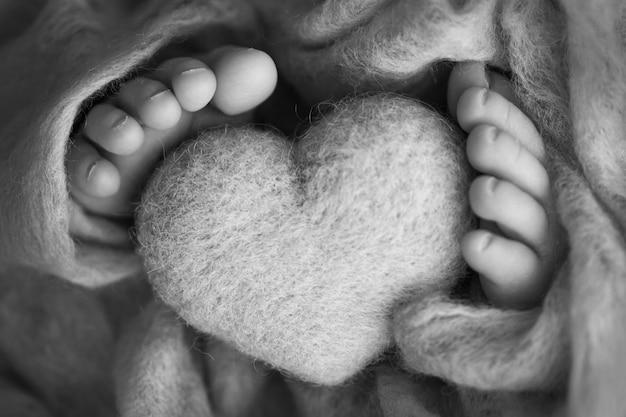 Zdjęcie nóg noworodka. stopy dziecka pokryte wełną na białym tle. maleńka stopa noworodka w miękkim, selektywnym ognisku. czarno-biały obraz podeszew stóp. zdjęcie wysokiej jakości