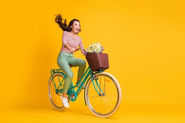Zdjęcie o pełnej długości ciała zdumionej dziewczyny krzyczącej na rowerze z koszem kwiatów na żywym żółtym kolorze tła