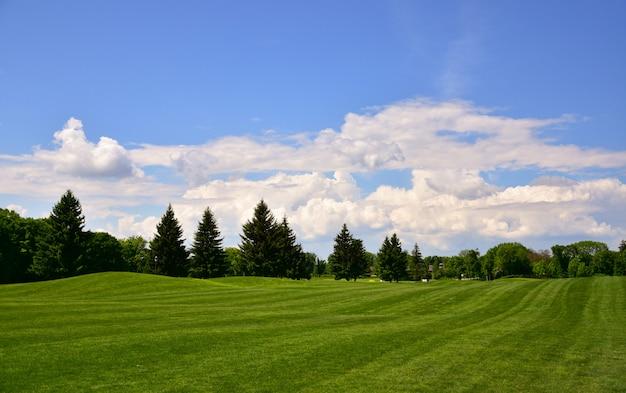 Zdjęcie pola golfowego. letni krajobraz. może służyć jako tapeta.