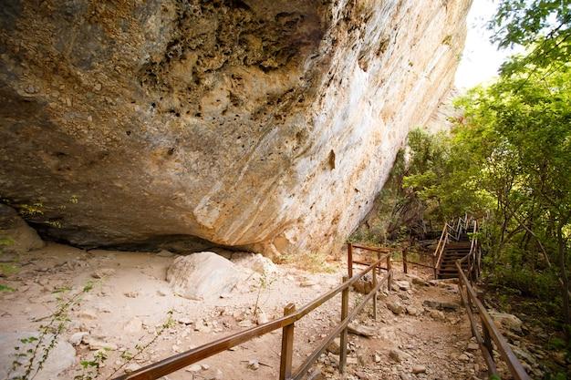Zdjęcie schodów i przejść w przyrodzie