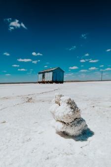 Zdjęcie soli morskiej w przyrodzie.