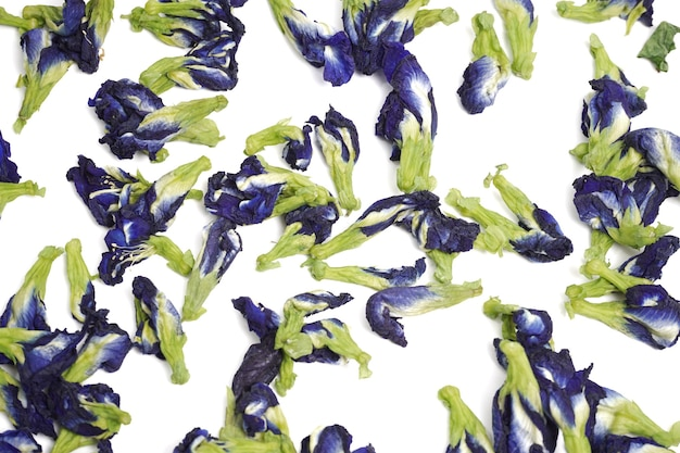 Zdjęcie suszonych kwiatów grochu motylkowego używanego do herbaty.