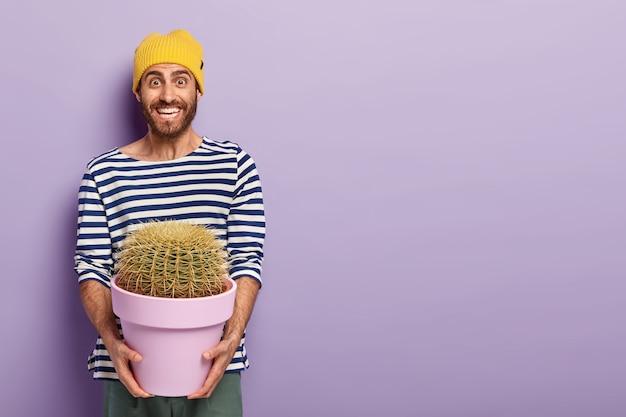 Zdjęcie szczęśliwego mężczyzny z przyjemnym uśmiechem, trzymającego garnek z kłującym kaktusem, w dobrym nastroju, ubranego w sweter w paski, pozuje na fioletowym tle z wolną przestrzenią