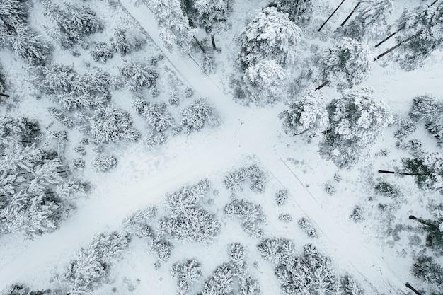 Zdjęcie z lotu ptaka drogi otoczonej hipnotyzującymi, pokrytymi śniegiem lasami