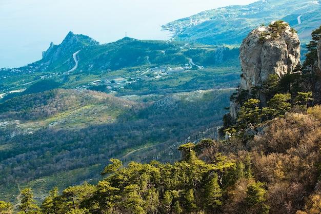Zdjęcie ze szczytu góry ai-petri, drzewo rosnące na skale, piękny horyzont i błękitne niebo z białymi chmurami