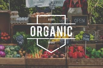 Zdrowa żywność organiczne świeże produkty rolnika