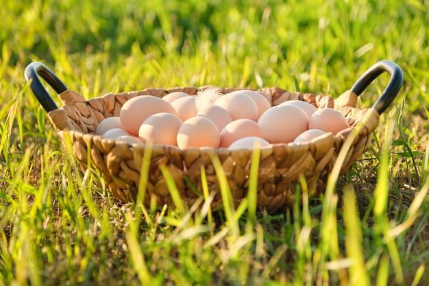 Zdrowe ekologiczne jedzenie, naturalne jaja kurze w koszu na zielonej trawie