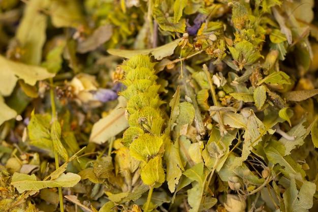 Zdrowe naturalne suszone liście roślin