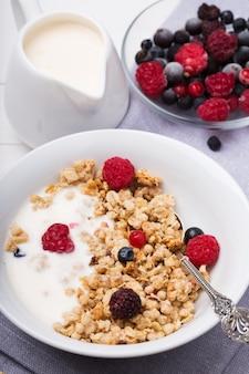 Zdrowe śniadanie musli granola z jogurtem i świeżymi jagodami w ceramicznej misce