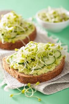 Zdrowy chleb żytni z kiełkami rzodkiewki ogórka awokado
