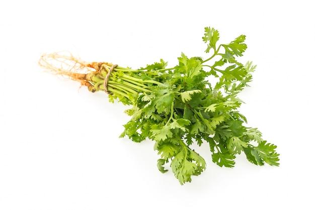 Zdrowy składnik aromatyczny smaczny tło