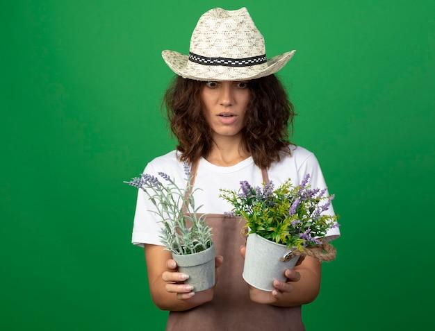 Zdziwiona młoda kobieta ogrodniczka w mundurze na sobie kapelusz ogrodniczy, trzymając i patrząc na kwiaty w doniczkach