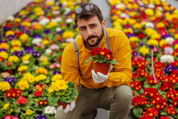 Zdziwiony przedsiębiorca skulony w szklarni w otoczeniu kwiatów i trzymający porty z kwiatami.