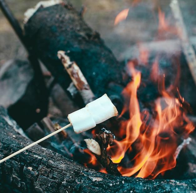 Zefir na patyku nad ogniem gotowanie pianek w ogniu