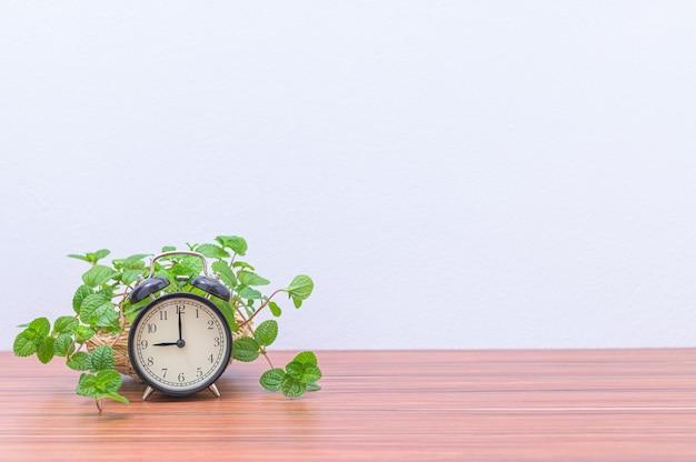 Zegar i roślina na biurku