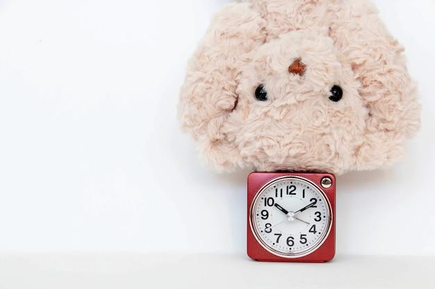 Zegar i słodki pluszowy miś pokazują kilka prostych pozycji jogi, aby rozciągnąć i wzmocnić.
