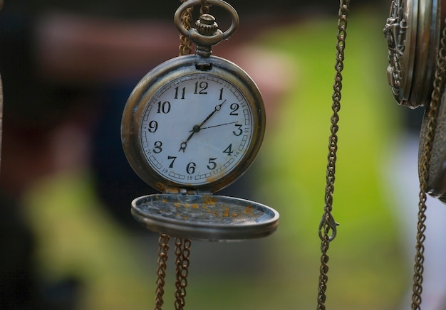 Zegar kieszonkowy na zielonym tle
