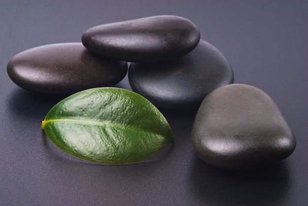 Zen kamienie i liść