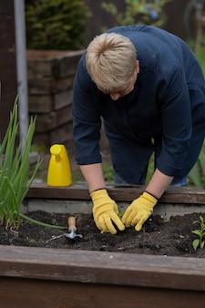 Żeńska dojrzała ogrodniczka sadzi młodej małej rośliny, pracuje w ogródzie z łopatą
