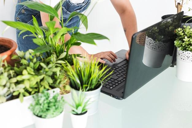 Żeńska kwiaciarnia używa laptop z doniczkowymi roślinami na biurku