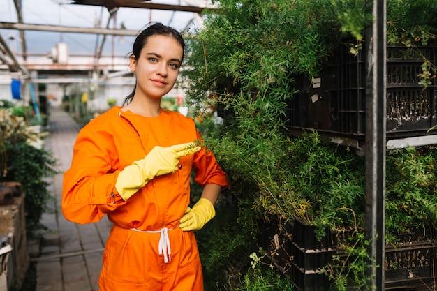 Żeńska ogrodniczka robi ręka gestowi w szklarni