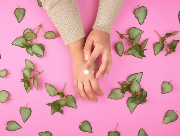 Żeńska ręka rozmazuje biały krem z drugiej strony i zielone świeże liście rośliny
