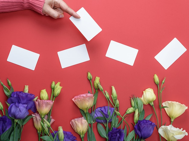 Żeńska ręka w różowym pulowerze trzyma pustą białego papieru wizytówkę