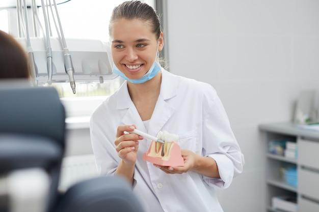 Żeński dentysta trzyma zębu modela