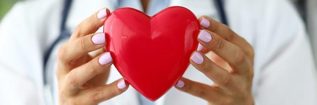 Żeński kardiolog trzyma w ręki czerwieni zabawki sercu
