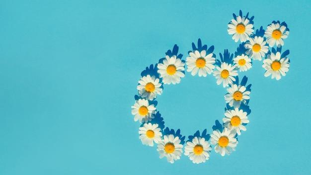 Żeński symbol płci z białymi stokrotkami na niebieskim tle z twardymi cieniami.