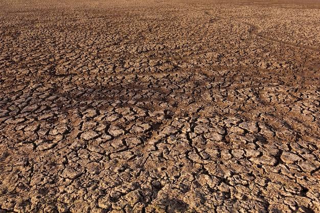 Zepsuta i sucha ziemia na pustyni