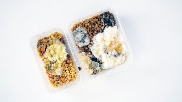 Zepsute jedzenie w pojemniku pastic box