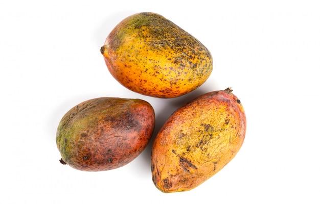 Zepsute mango. przejrzałe owoce na białej powierzchni. na białym tle