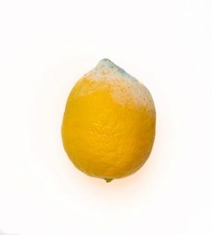 Zepsute, zepsute cytryny na białym tle