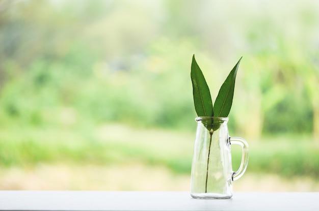 Zero odpadów zużywają mniej plastikowego eko zielonego szkła liściastego