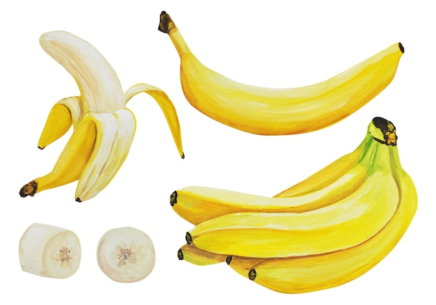 Zestaw akwarela bananów.