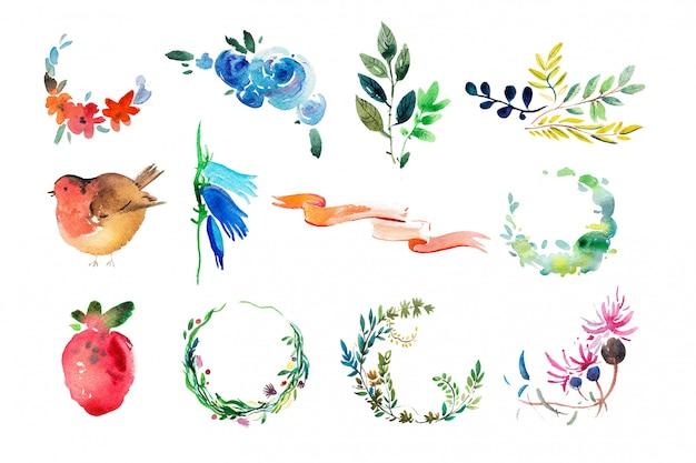 Zestaw akwarela liści i kwiatów
