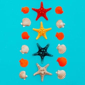Zestaw gwiazd morskich i muszli.