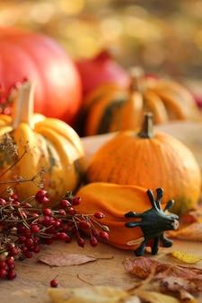 Zestaw jesienne dynie. święto dziękczynienia. jesienne warzywa. pomarańczowe i czerwone dynie, gałęzie z czerwonymi jagodami