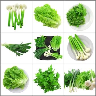 Zestaw młodych warzyw-cebula, czosnek, pietruszka i sałata.pojedynczo