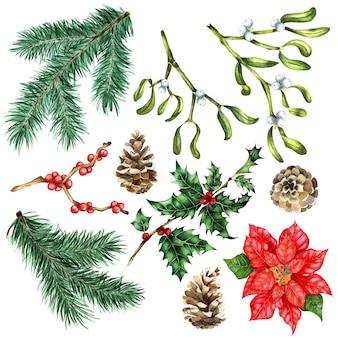 Zestaw na boże narodzenie i nowy rok akwarele ilustracji gałęzi sosny jodły poinsecji