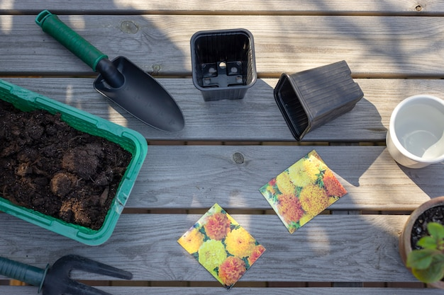 Zestaw narzędzi ogrodowych, doniczki do sadzonek, gleba na drewnianym stole preparat do sadzenia nasion kwiatów aksamitka