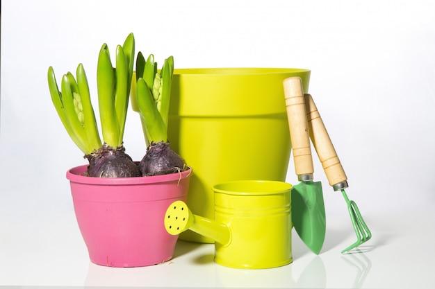 Zestaw ogrodowy przedmioty na kwiaty. hiacyntowe żarówki, doniczka i konewka. przesadzanie roślin.