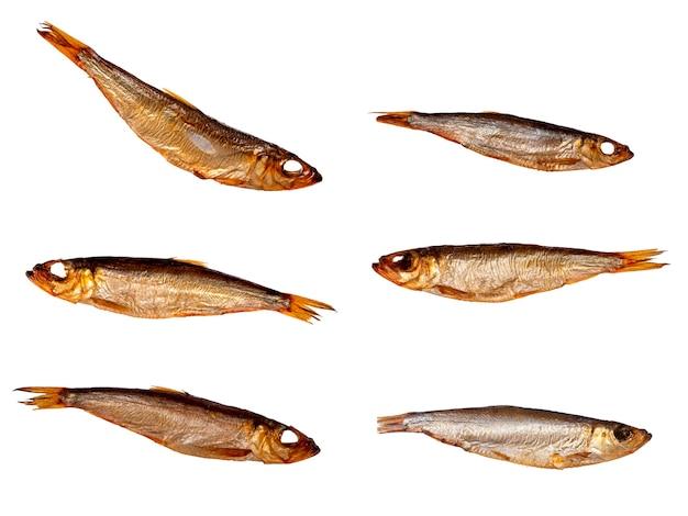 Zestaw suszonych sardynek na białym tle. rybny przysmak