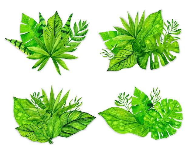 Zestaw tropikalnych liści egzotycznych. ilustracja akwarela